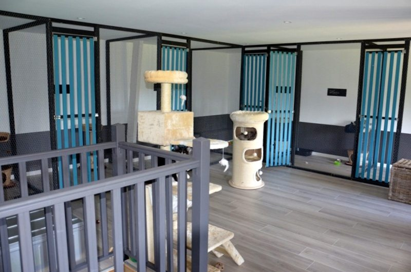 pension confortable pour chats paimpont pension canine 35. Black Bedroom Furniture Sets. Home Design Ideas
